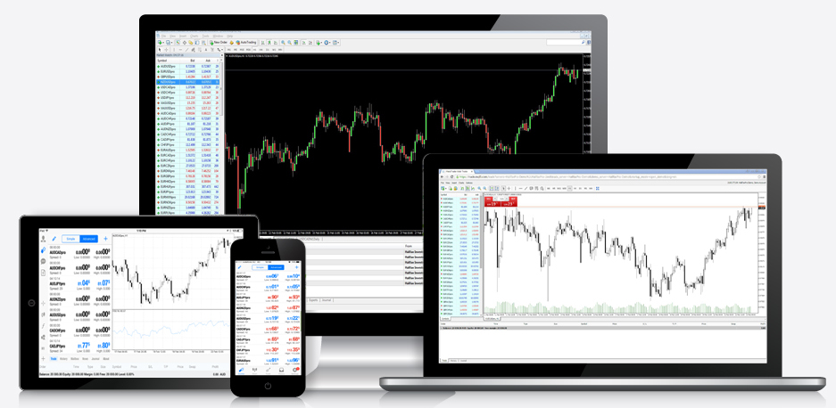 how to create a trading software stats