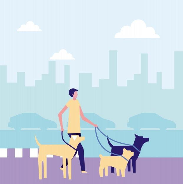 on demand dog walking app development like Uber