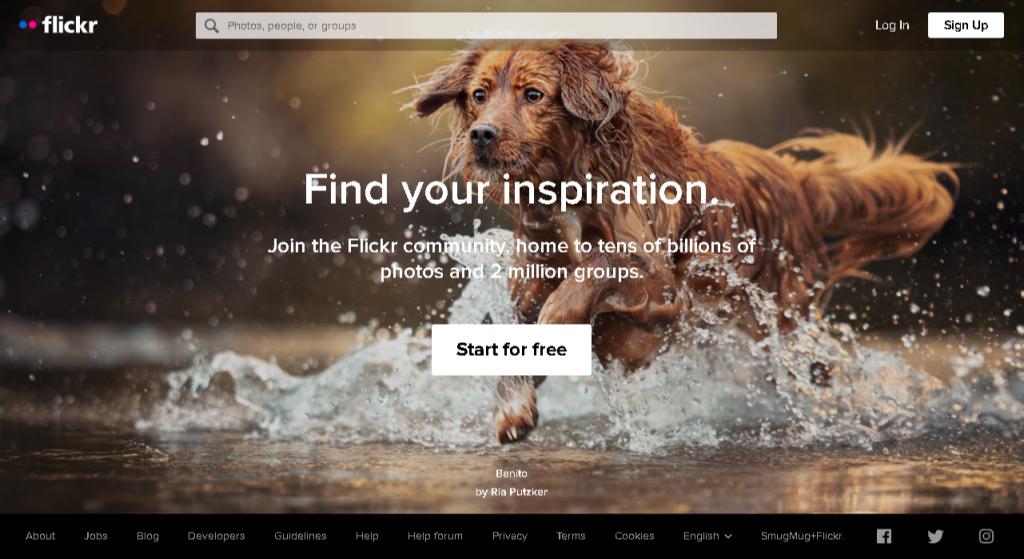 flickr homepage screenshot